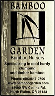 Bamboo Garden Bamboo Nursery